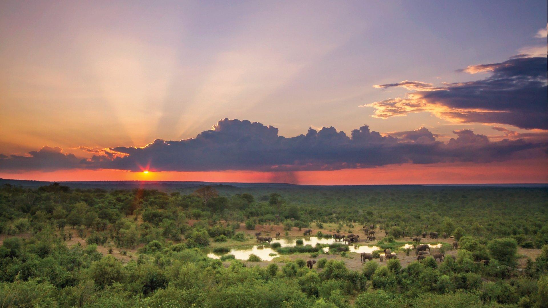 Victoria-Falls-Hotel-Waterhole-Sunset
