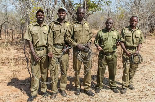 29 Feb 2016 - VFAPU scouts with some of the wire snares they have removed
